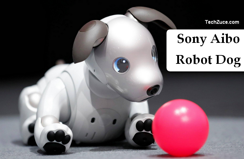 Sony Aibo Robot Dog- Sony's new robotic probe